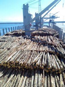 Carga de troncos