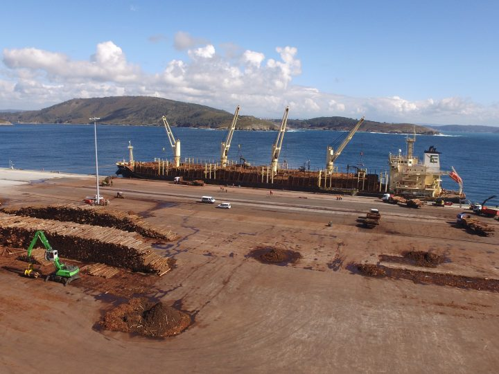 Second shipment of Galician wood exported to Asia at the Outer Harbour of Ferrol