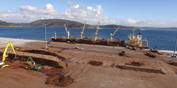 AT THE EQUATOR OF THE YEAR, THE PORT AUTHORITY HAS ALREADY MOVED OVER 6.5 MILLION TONNES IN ITS FACILITIES.